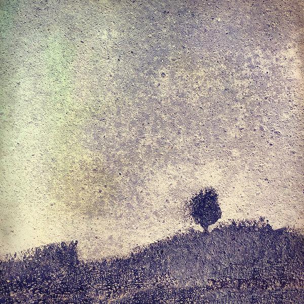 Výtvarná fotografie cyklus Krajiny imaginace. Strom ve větru na kopci.