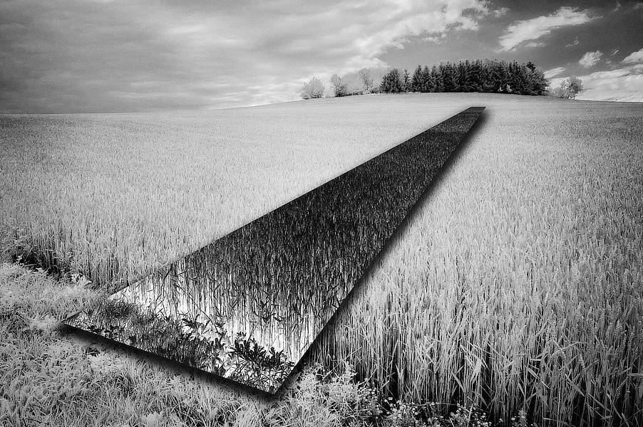Anatomie krajiny. Část negativně převráceného obrazu působí jako zrcadlo umístěné v krajině. Pole obilí u Maršovic.