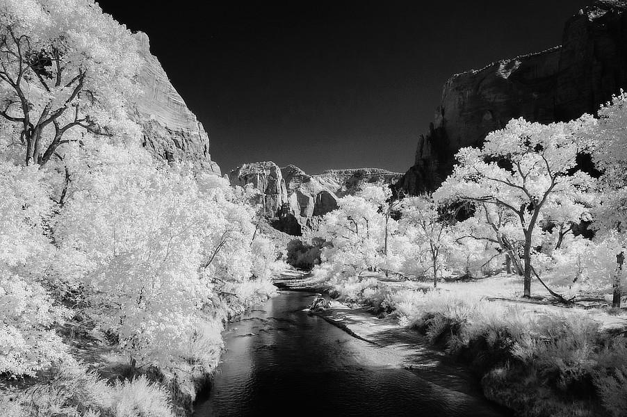 Infračervená černobílá fotografie Virgin River, NP Zion, Utah.