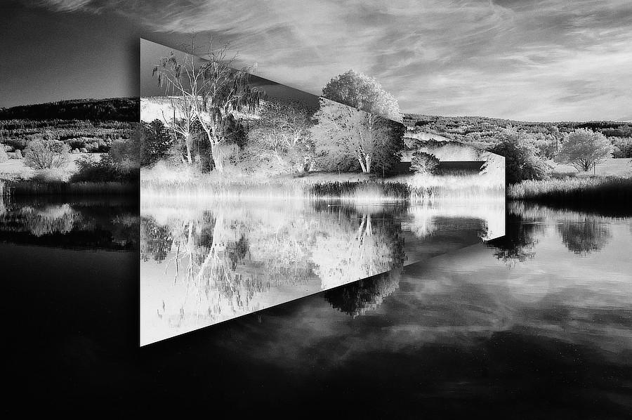 Anatomie krajiny. Část negativně převráceného obrazu působí jako zrcadlo umístěné v krajině. Rybník Hražba v Bezdědicích.